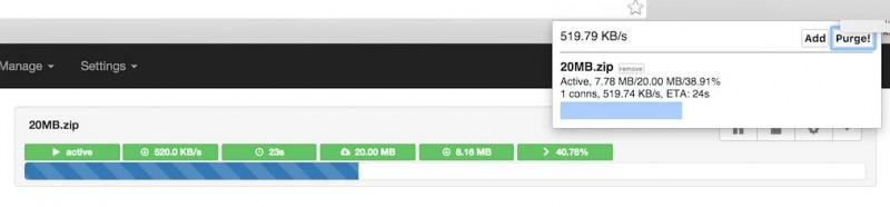 Aria2 - Web Interface en Google Chrome Extensie