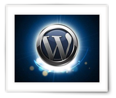 WordPress – Backslash behoud in Posts
